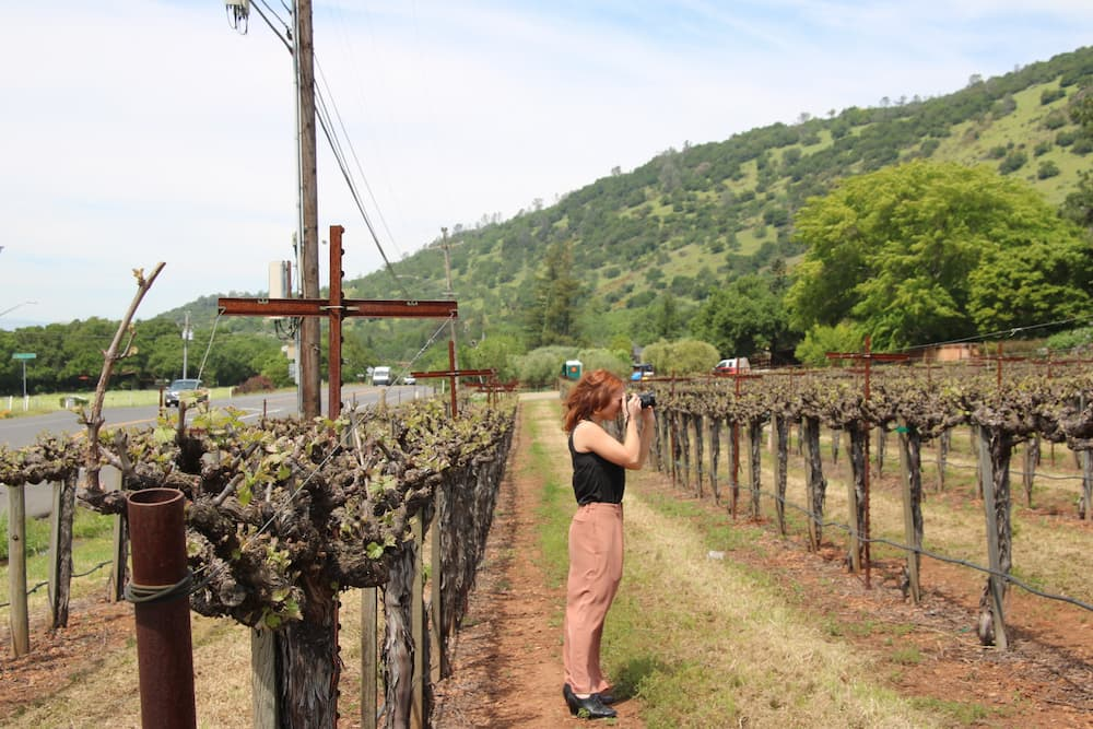 social media marketing and photography for Napa Valley wineries